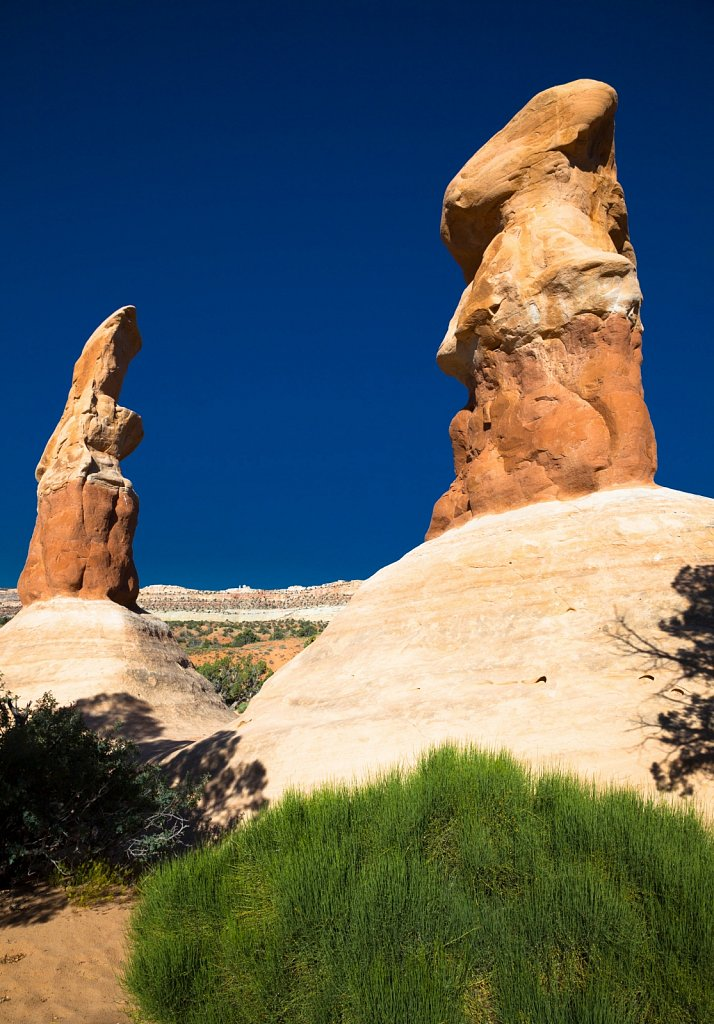 Sandstone Hoodoos look like statues in Utah
