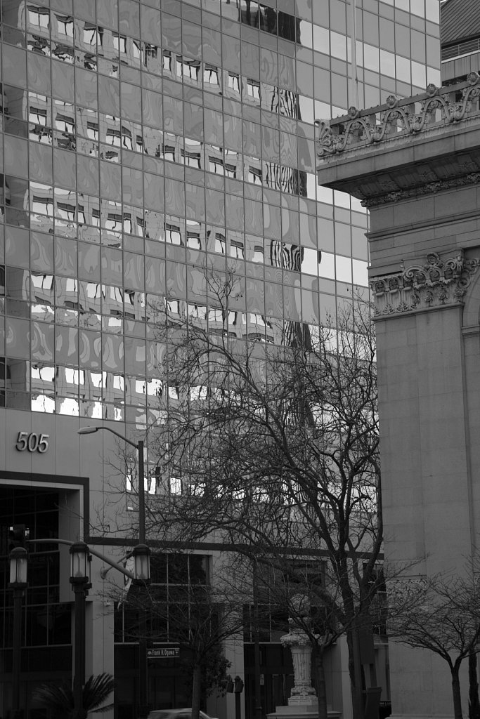 Downtown Oakland Buildings, Trees