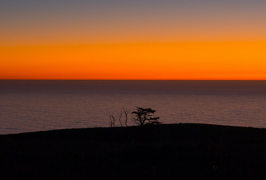 Trees on a hill silhouetted against the Pacific Ocean at dusk
