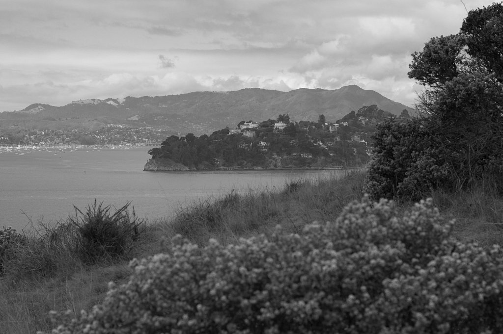 Sausalito and Tiburon from Angel Island